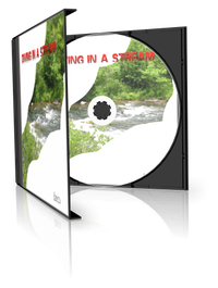 Diving in a Stream [Download]